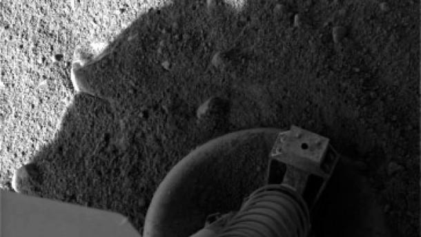 Phoenix sucht nach Leben auf dem Mars