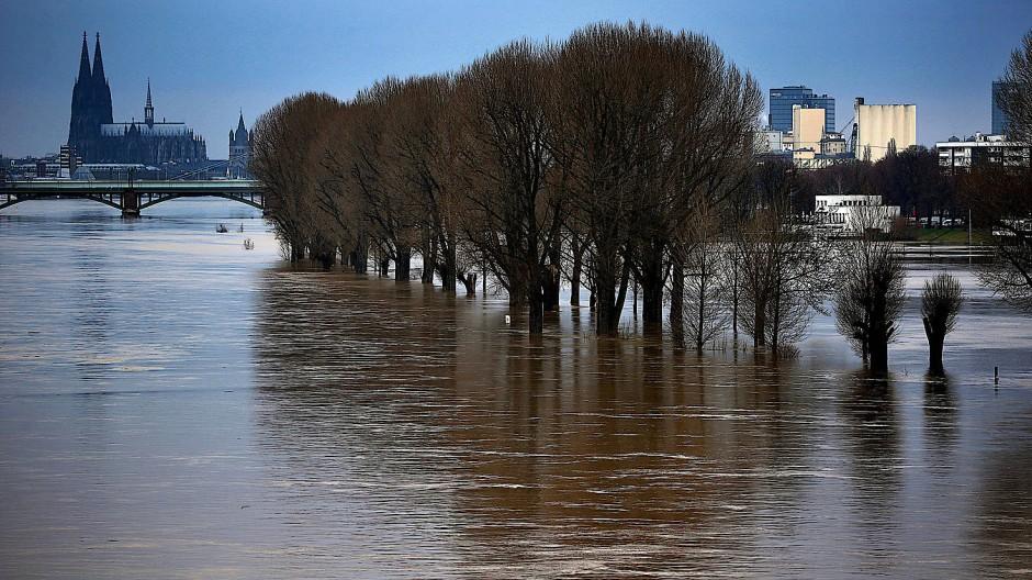 Wasser überflutet am Montag in Köln das Rheinufer.