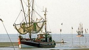 Wasserqualität in der Nordsee entscheidend verbessert