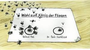 Unregelmäßigkeiten bei der Bundestagswahl?