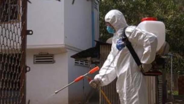 Nordkorea bestätigt Ausbruch der Vogelgrippe