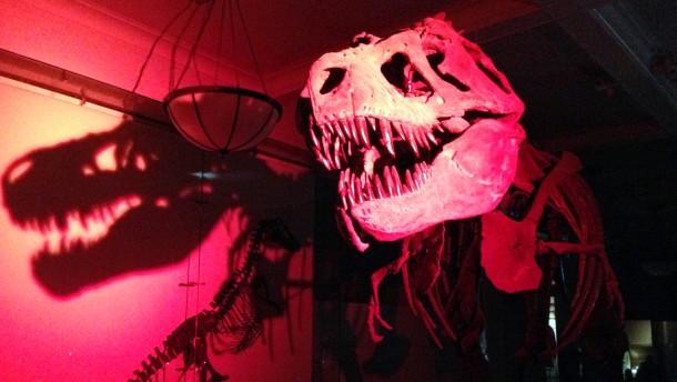Läuft der Dino nach Mitternacht?
