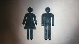 Ausweise der Niederlande bald ohne Geschlechtsangabe