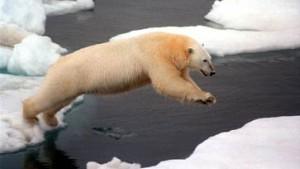 Traditionelle Eiswette in Alaska liefert Daten über die Erderwärmung