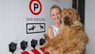 Yanic Smit betreibt ein Luxushotel für Hunde. Ihr Haustier Frits ist Vorstandsvorsitzender.