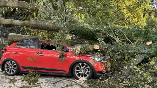Umgeknickte Bäume versperren Straßen und beschädigen Autos