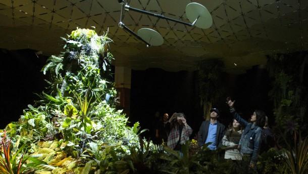 Der erste unterirdische Park der Welt