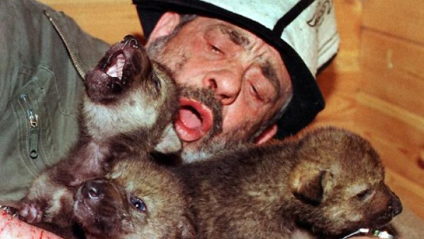 Wolfskinder und Affenforscher