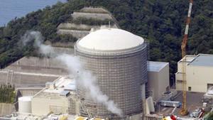 Japan ordnet Sicherheitsprüfung von Kraftwerken an