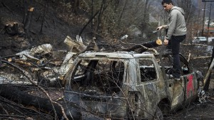 Zwei Jugendliche wegen Waldbränden verhaftet