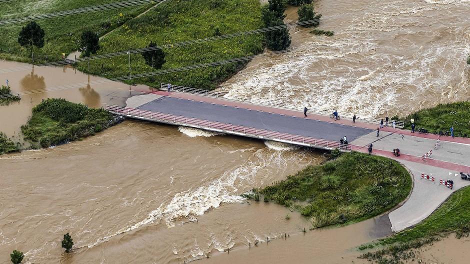 Überflutet: Uferregion der Maas in der Nähe von Roosteren