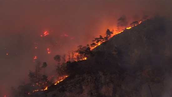 Hunderte Hektar Wald in Brand