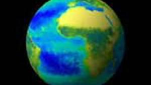 Erheblicher Planktonrückgang in nördlichen Ozeanen