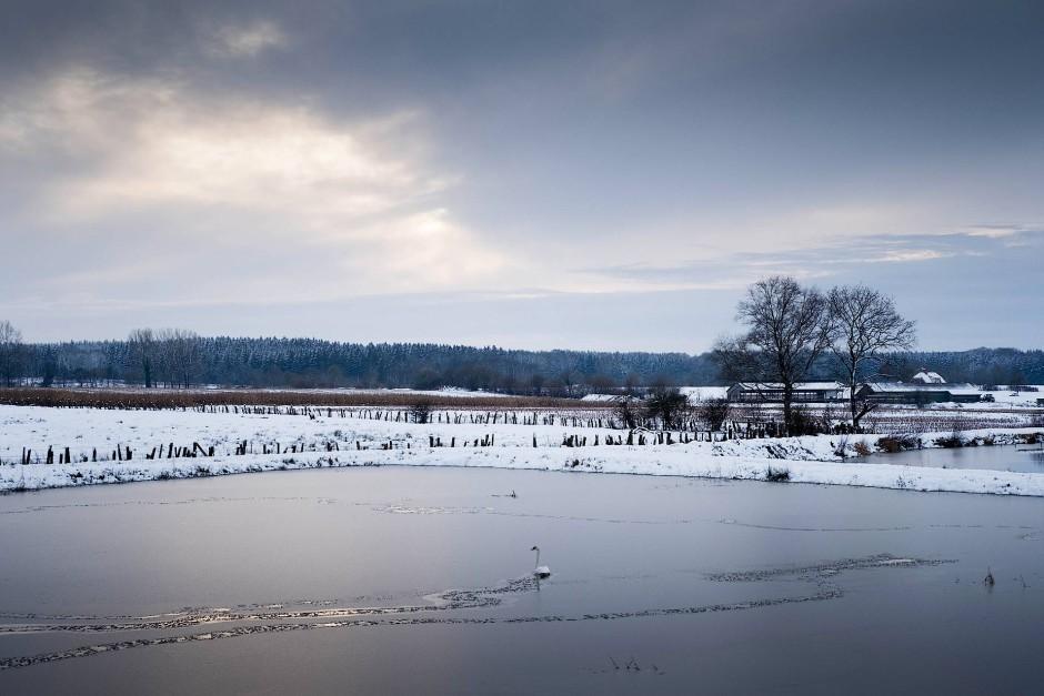 Hier schlummern ungewöhnliche Kostbarkeiten: ein Blick auf die Hälterungsbecken im Naturpark Aukrug