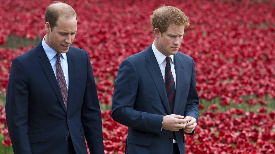 Wir werden immer Brüder sein:  Prinz Harry (rechts) und sein Bruder Prinz William (Archivbild)
