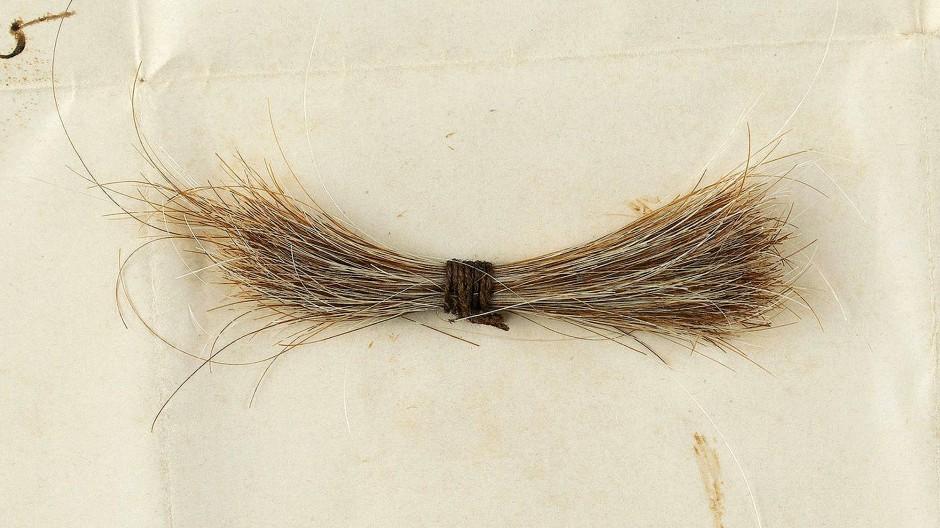 Echte Locke: Das post mortem abgeschnittene Haar Abraham Lincolns wurde für mehr als 80.000 Dollar versteigert.