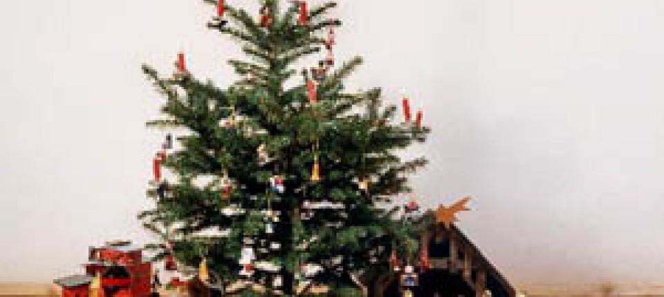 Wann Wird In New York Der Weihnachtsbaum Aufgestellt.Weihnachten Der Siegeszug Des Weihnachtsbaums Gesellschaft Faz