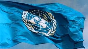 Vereinte Nationen sehen BSE-Risiko in 100 Staaten