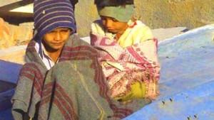 Waisenkinder - verzweifelt gesucht