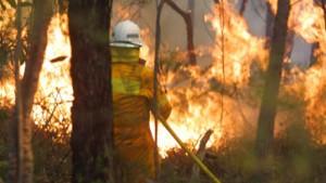 Erstes Todesopfer durch Buschbrände