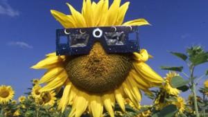 Erste europäische Sonnenfinsternis seit 1999
