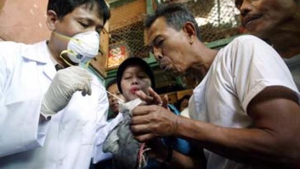 Asiatische Staaten beraten Strategie gegen Vogelgrippe