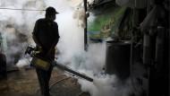 Ein Mann versprüht in Thailands Hauptstadt Bangkok ein Insektizid, das gegen Zika-übertragende Mücken helfen soll.