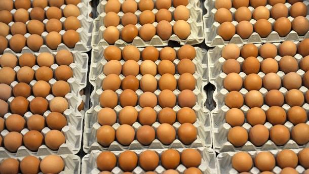 Millionen belastete Eier zurückgerufen