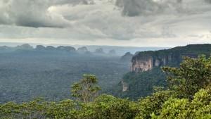 Der wichtigste Ort der Artenvielfalt auf der Welt