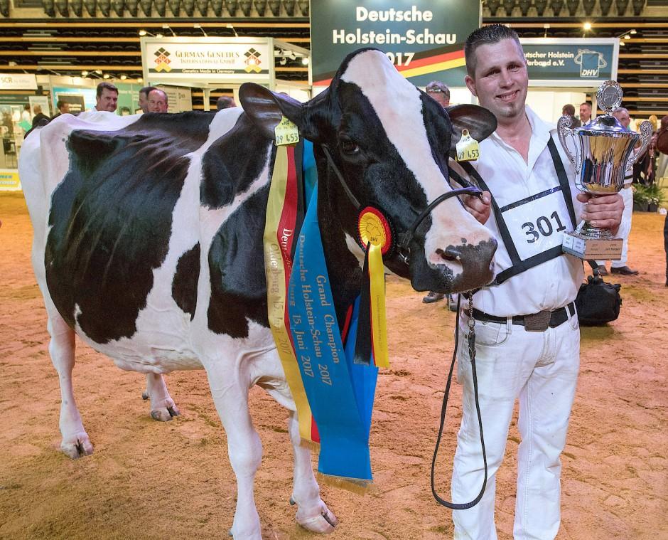 Siegerkuh Lady Gaga als Grand Champion 2017 bei der Deutschen Holstein-Schau.