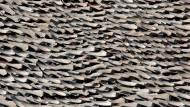 Handel wohl bald verboten: Haifischflossen trocknen auf dem Dach einer Fabrik in Hongkong