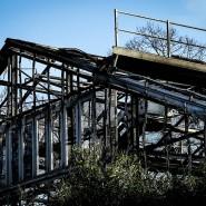 Die mutmaßlichen Verursacher des Brandes im Krefelder Affenhaus haben sich bei den Ermittlern gemeldet.