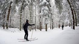 Familie nach dreistündiger Suchaktion im Harz gefunden