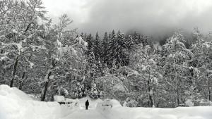Schüler werden von Schneelawine überrollt – und überleben