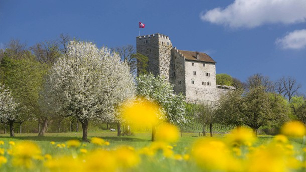 Schlossverdruss