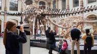"""Es braucht jemanden der den Durchblick hat – und erklären kann: Die Museen freuen sich auf neue Kräfte aus der """"Public History""""."""