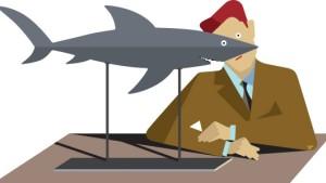 Überleben im Haifischbecken