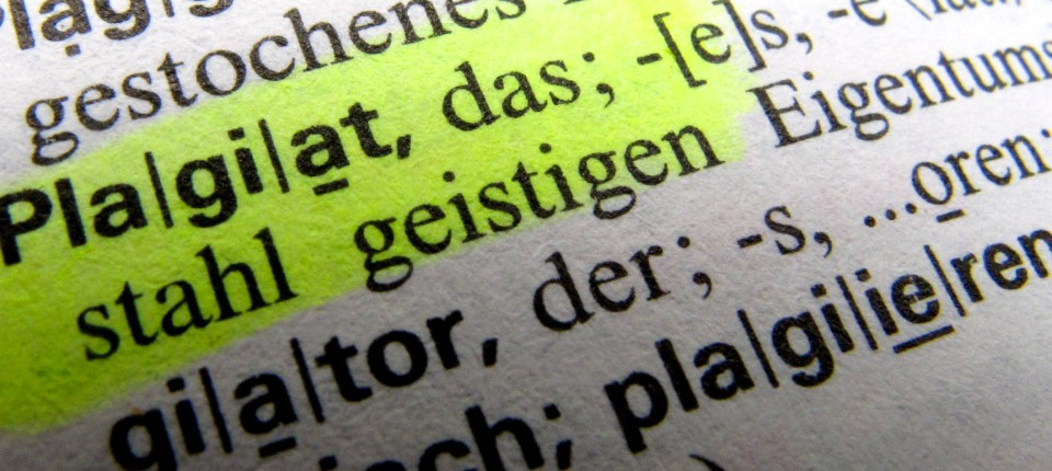 Plagiat Doktorarbeiten Konsequenzen Debora Weber Wulff