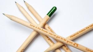 Ein Stift, der eine Pflanze werden kann