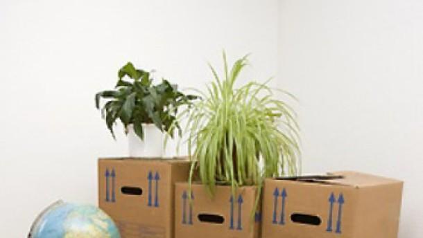 standortverlagerung nur wenige ziehen mit arbeitswelt faz. Black Bedroom Furniture Sets. Home Design Ideas