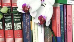 Steile Karriere mit Orchideenfächern