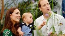 Kate ist wieder schwanger, aber den Herzblättern genügt das nicht