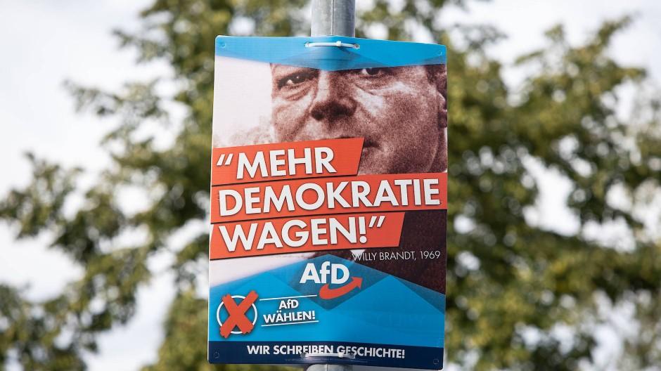 Wahlplakat der AfD in Teltow