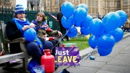 Vor dem Parlament vermischen sich Brexit-Gegner und -Befürworter.