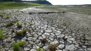 Regierungsbericht widerspricht  Trumps Klimapolitik
