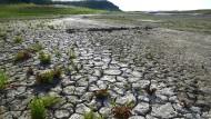 An solche Bilder müssen sich die Amerikaner gewöhnen: Risse ziehen sich 2015 über den trockenen Boden eines Wasserreservoirs in Camanche in Kalifornien.