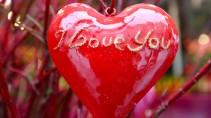 Dating-Dienste 50 über Dating-Agentur stoke auf trent