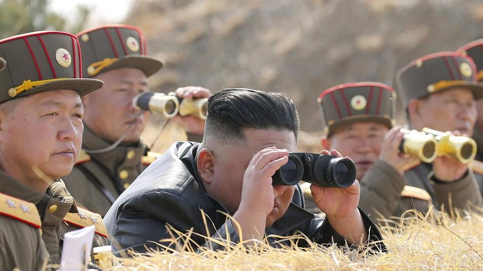 Ja, wo fliegen sie denn? Nordkoreas Diktator Kim Jong-un beobachtet eine Artillerie-Schießübung seiner Armee.