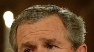 Führende Demokraten gehen auf Distanz zu Bushs Irak-Kurs