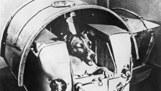 "Weltraumhund ""Laika"""